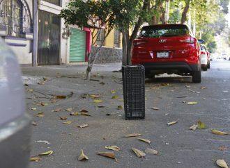 Botes, llantas y cascajo los dueños de las calles en la Ciudad de México