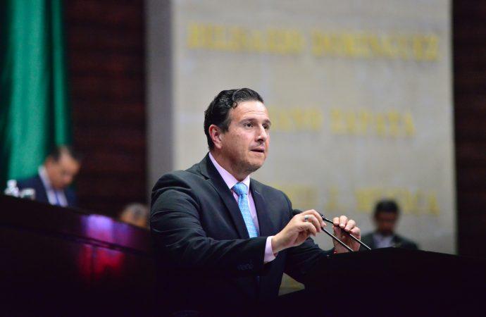 Garantizar leyes a favor del medio ambiente y de la conservación de especies: Pinto Torres
