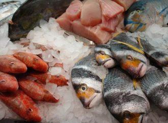 Indispensable extremar precauciones en consumo de pescado y mariscos