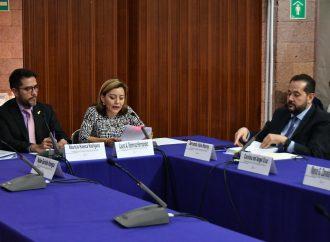 Suma IECM 217 Procedimientos Especiales Sancionadores durante Proceso Electoral Ordinario Local 2017-2018