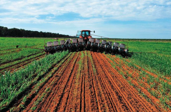 Se prevé mantener 35 programas prioritarios en el sector agropecuario para el próximo año