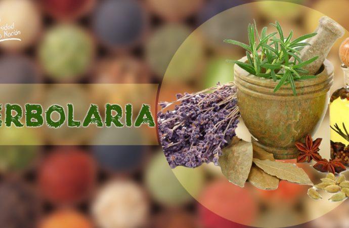Se formaliza el Sector Herbolario en México
