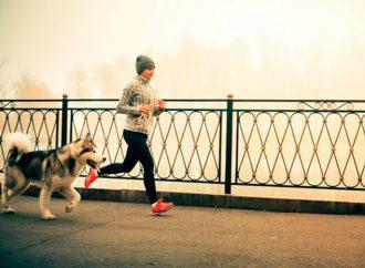 Hacer ejercicio con tu mascota tiene beneficios para ambos