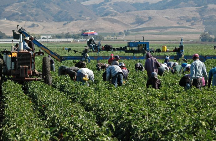 Propone diputado Alva y Alva crear Fondo de Agricultura Verde para mitigar consecuencias del cambio climático