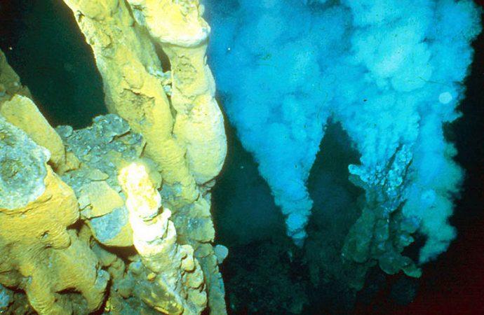 """Descubren """"chimeneas"""" marinas con capacidad de generar energía para abastecer a Los Cabos"""