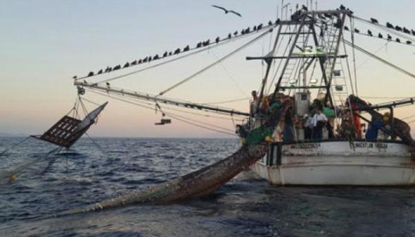 Pide PRI que Semarnat informe sobre motivos y estudios para designar áreas naturales protegidas y de veda en zonas de pesca