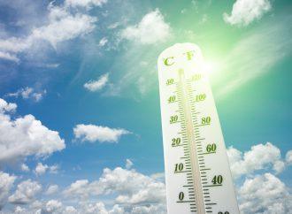 Altas temperaturas en conducta violenta y aumento de la tasa de suicidios