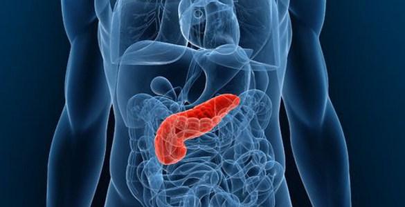La nutrición adecuada ayuda a pacientes con cáncer de páncreas a tener una mejor calidad de vida