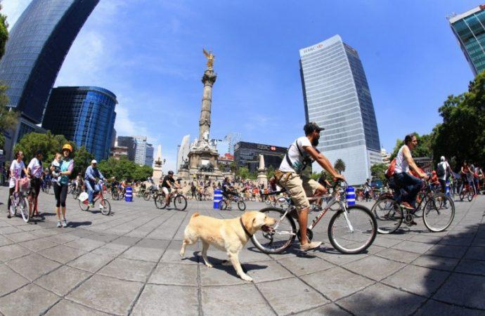 Celebran 11 años del paseo dominical Muévete En Bici con reconocimiento