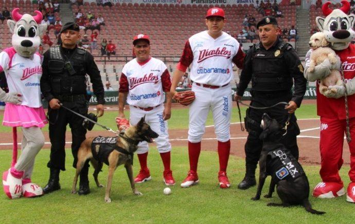 Celebran SSP-CDMX y Diablos Rojos del México, el Día Internacional del Perro