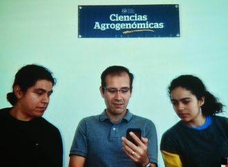 Mexicanos crean algoritmo para manejar invernadero y ganan concurso en Holanda