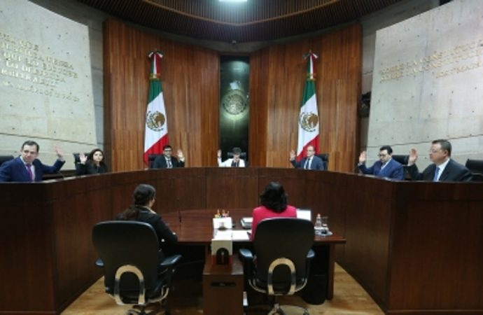 Tribunal Electoral resolverá juicios sobre legisladores plurinominales