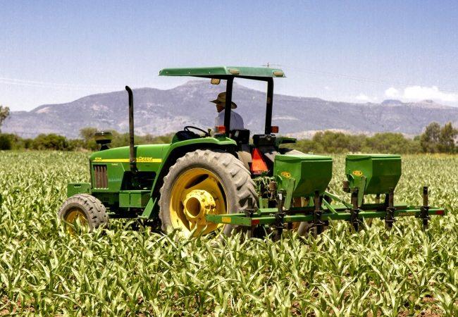 Agricultores y ganaderos se suman a proyecto de próxima administración
