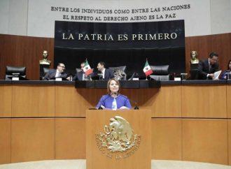 Fortalecer la UIF para combatir el lavado de dinero, propone la senadora Minerva Hernández