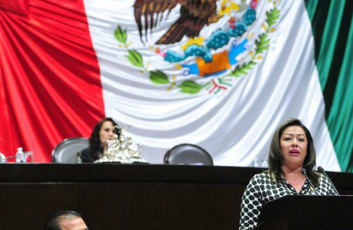 Transición ordenada y eficiente para que 40 millones de mexicanos tengan garantizados sus apoyos sociales: Sedesol