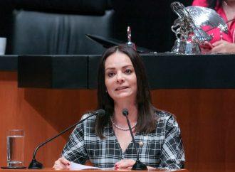 Pide Nuvia Mayorga que Senado reconozca labor de Profeco para emitir alertas automotrices