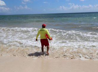 Se intensifican trabajos de limpieza en las Playas de Solidaridad