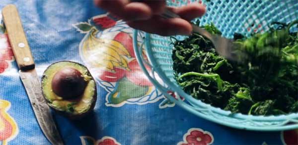 """""""El Taco Mazahua"""": Documental Mexicano recibe Premio Mark Haslman  en el Festival de Cine Ambiental Canadience"""
