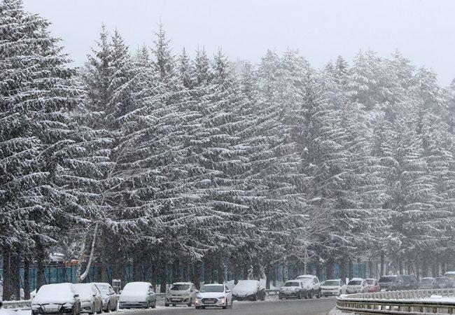 Más de 80 millones en EU bajo alerta de masiva tormenta invernal