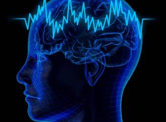 Los niños que pasan siete horas con celulares sufren cambios cerebrales