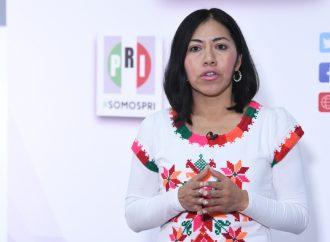 Inclusión y participación efectiva de los indígenas, tarea fundamental del PRI: Bernarda Reyes