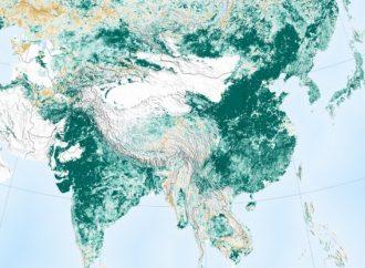 Planeta Tierra es más verde que hace 20 años, afirma la NASA