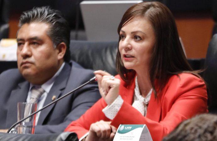 Rechaza Nuvia Mayorga Recorte Presupuestal a Estancias Infantiles