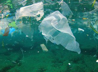 Hidrocarburos, plaguicidas y plásticos, principales contaminantes del Golfo de México