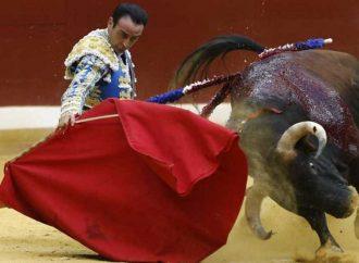Propondrán prohibir las corridas de toros con reforma al código para la Biodiversidad,