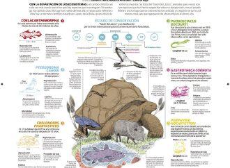 Regresan 8 especies que creían extintas