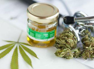 Sustituirán lineamientos para el Uso Medicinal de la Marihuana: Alcocer Varela