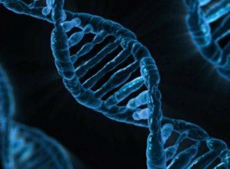 Biólogos rusos usan células de ADN para combatir el cáncer