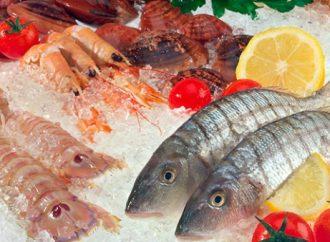 La pesca, asunto de seguridad nacional: Maximiliano Ruiz