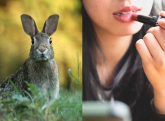 Avon se une a la campaña #BeCrueltyFree de Humane Society International