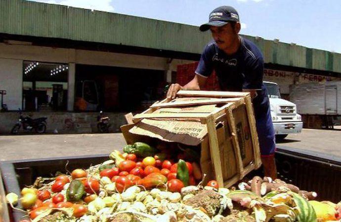 Buscará comisión reunirse con el titular de Segalmex para abordar el tema del desperdicio de alimentos