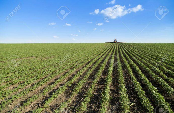 Ramírez Cuéllar señala serias carencias presupuestales en agricultura, educación e infraestructura