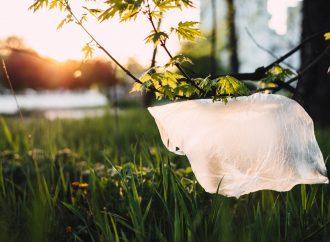 Bolsas de plástico, creadas para cuidar el medio ambiente