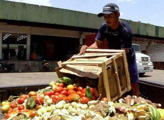 Se desperdician 1.3 millones de toneladas de alimentos que se producen en México