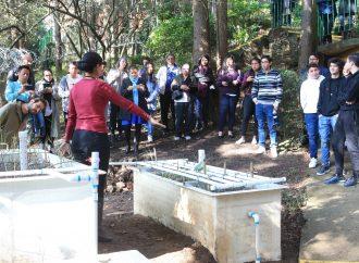 UAM instala sus primeros humedales artificiales
