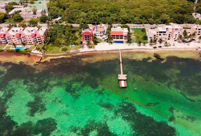 Playas de Quintana Roo están libres de sargazo