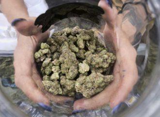 Van 4 estados de EU por legalización de mariguana