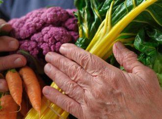 Nutrición adecuada ayuda a la recuperación de adultos mayores con Covid-19