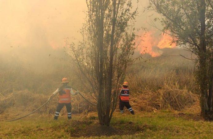 Ante temporada de estiaje, refuerza Xochimilco acciones contra incendios forestales