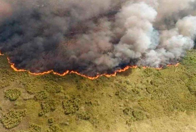 Prevén mal panorama para temporada de incendios en Quintana Roo