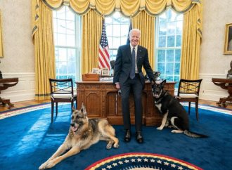 Biden presume a sus mascotas dentro del Despacho Oval