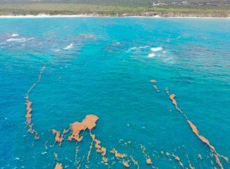 Isla Mujeres se alista para hacer frente a temporada de sargazo