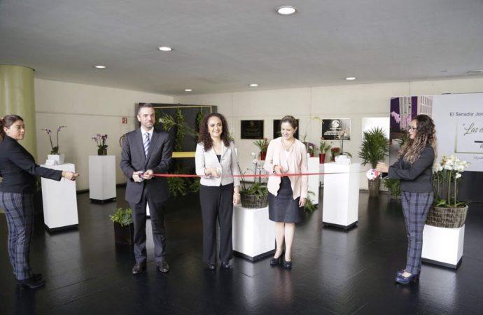 """Inauguran Exposición """"Las Orquídeas y plantas de México"""" en Senado Mexicano"""