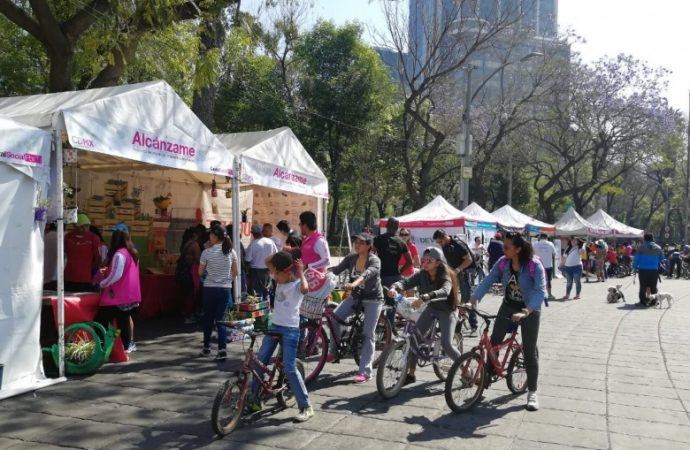 Rompe récord paseo dominical Muévete en Bici: Participan más de 81 mil 500 personas