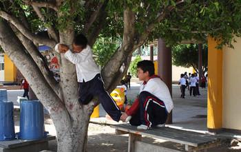 Protege a tu familia de los accidentes escolares