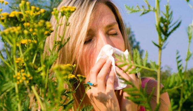 Probióticos reducen riesgo de alergias, resistencia a antibióticos y enfermedades intestinales en recién nacidos